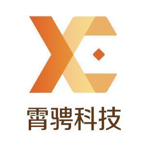 上海霄骋信息科技有限公司
