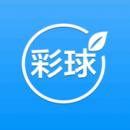 北京彩球世纪科技有限公司