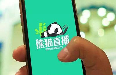 不回家上班,繼續創業 王思聰攜普思投資承擔近20億元投資損失